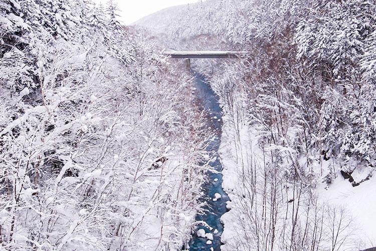 川に架かる橋にも雪が降り積もっている