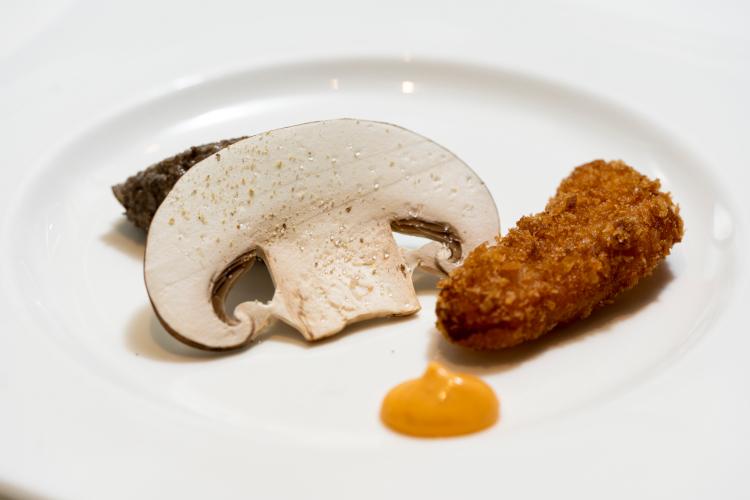 キノコの概念をかえる男 山岡昌治が生み出す驚きの食体験