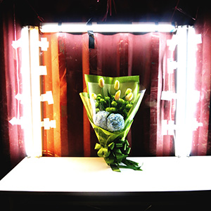 (89) 誰に捧げた花束か 永瀬正敏が撮った台湾