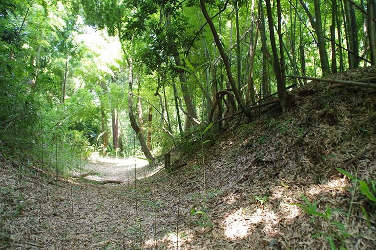 北側斜面をめぐる横堀