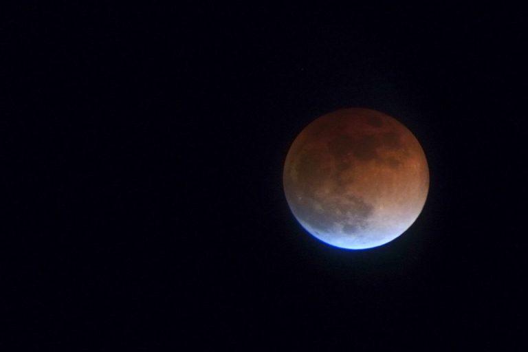 「目があった!」お相手は…… 皆既月食の夜に