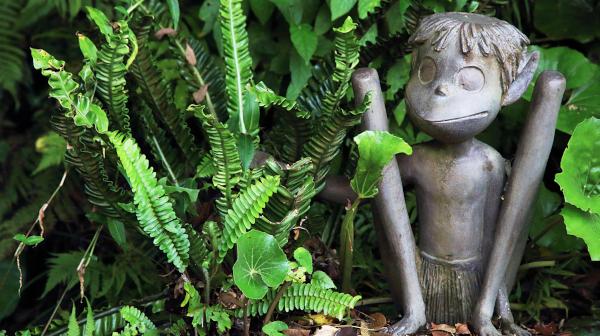 妖怪「ケンムン」を探せ! 奄美大島南部の旅