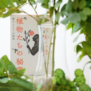マスクが変えた「香り」との距離。意外でうれしい植物の力