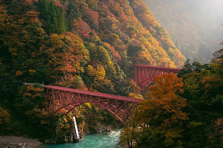 午前中に光が差し込む瞬間を撮影した一枚。神々しくて日本の四季と地方にこそ、美しさの神髄があると感じた