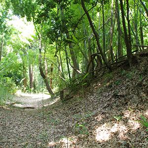 憩いの公園で見つける戦国の片鱗 東京・片倉城