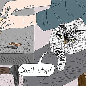猫の手、貸します。byボー&ベー(飼い主・丹野則雄さん)