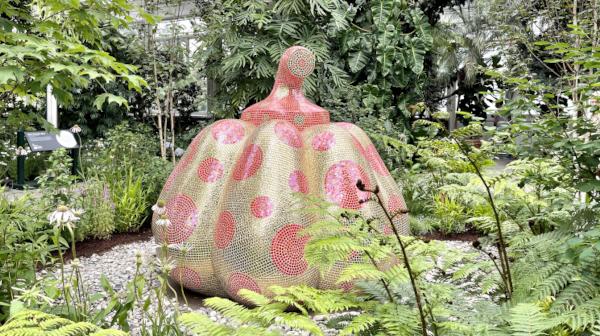 久保純子さん、ニューヨークで「草間彌生展」へ