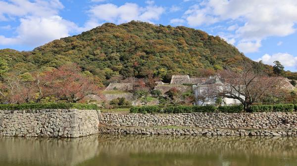 戦国時代の城と江戸時代の城が共存 鳥取城