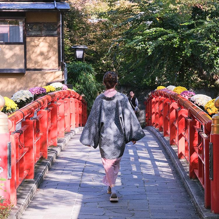 朱色の橋を渡り、川音に癒やされる 伊豆・修善寺温泉へ
