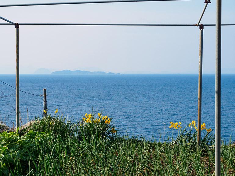 坂道を上り切った先には、民家や畑が点在。思いのほか、生活感のある風景だった