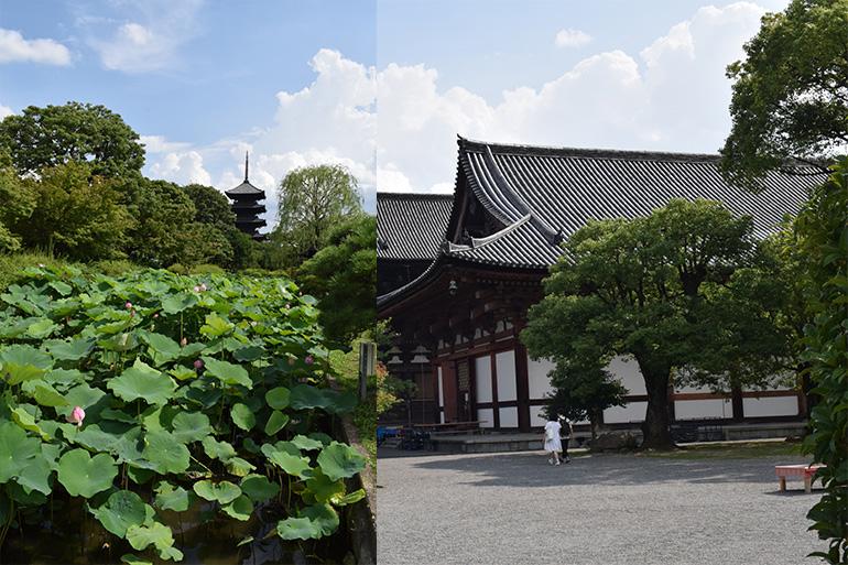 世界遺産・東寺の風景。広い境内は別世界