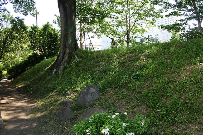 高崎城に残る土塁の一部