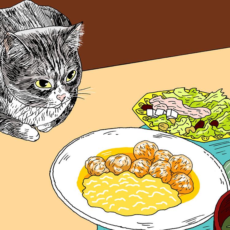 箸から転がるおかずは、猫のもの。by つゆ(飼い主・石井早耶香さん)