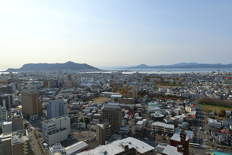 #cap1-4 五稜郭タワーから。函館山麓に箱館港があった