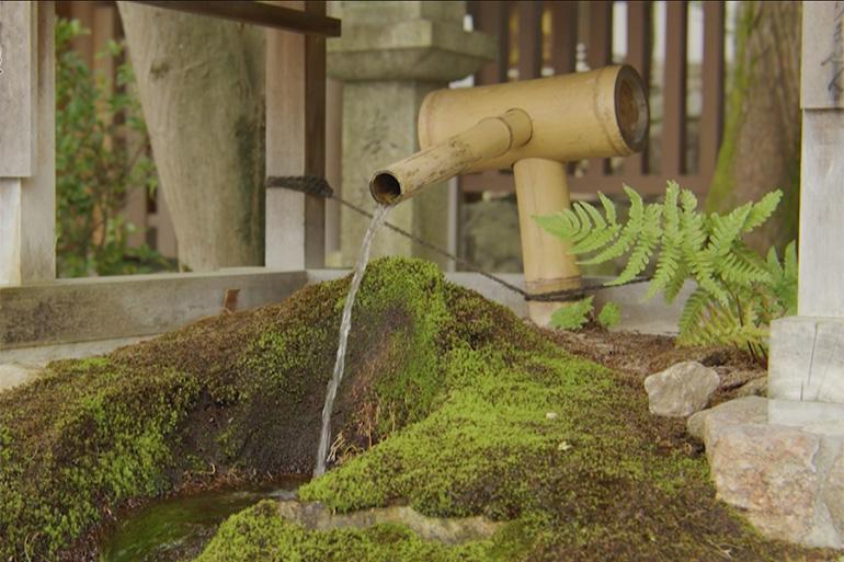 八坂神社境内には、御神水が湧く摂社も。こちらは「大神宮社」の力水© KBS京都/TOKYO MX/BS11