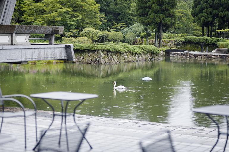 日本庭園の池には白鳥が泳ぎ、訪れた人を和ませる。公募で選ばれた名前は、つがいの「幸子」と愛いっぱいの幸せな家庭が営まれるようにと「幸男」。庭に出て散歩することも可能