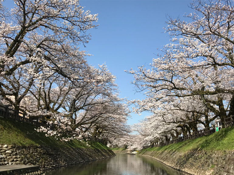 はなたび最終回。大好きな富山の旅を振り返る
