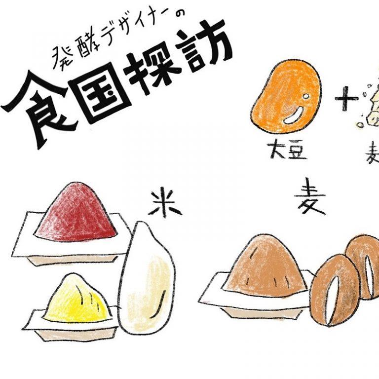 「熟成期間」「味」「原料のバランス」から分析 みその基本をマニアックに解説!