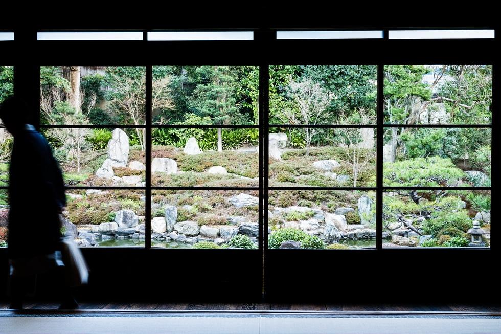 大書院の前に広がる庭は、京都府指定の名勝庭園