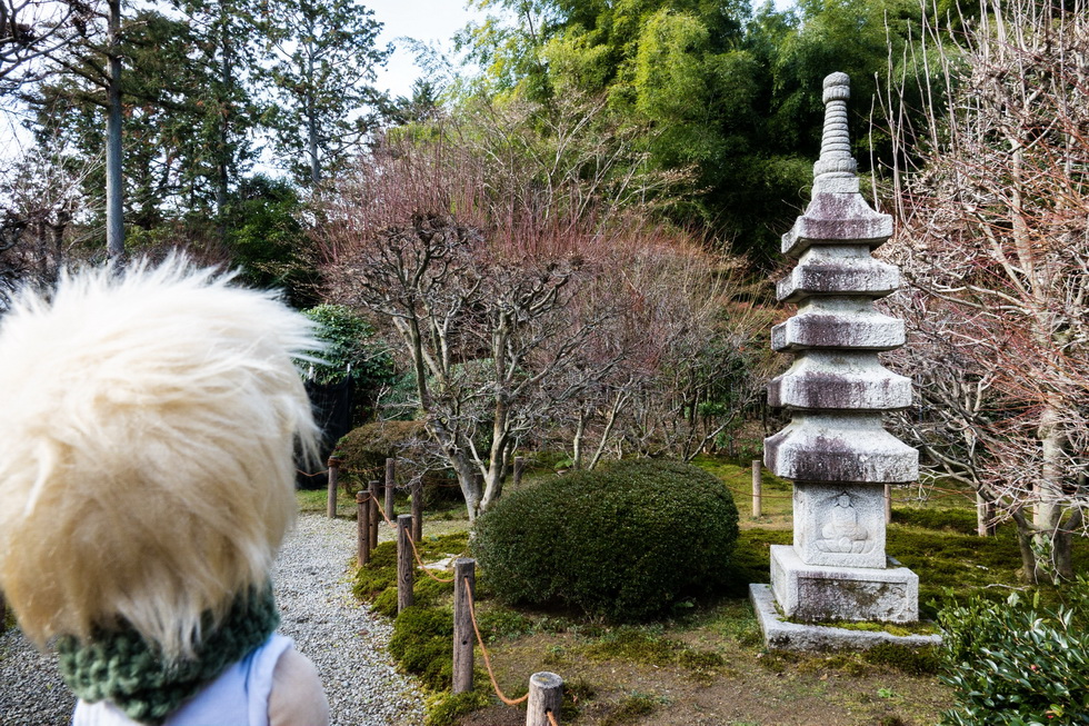 さらに普段は公開していない仏殿や西の庭も拝観できます!