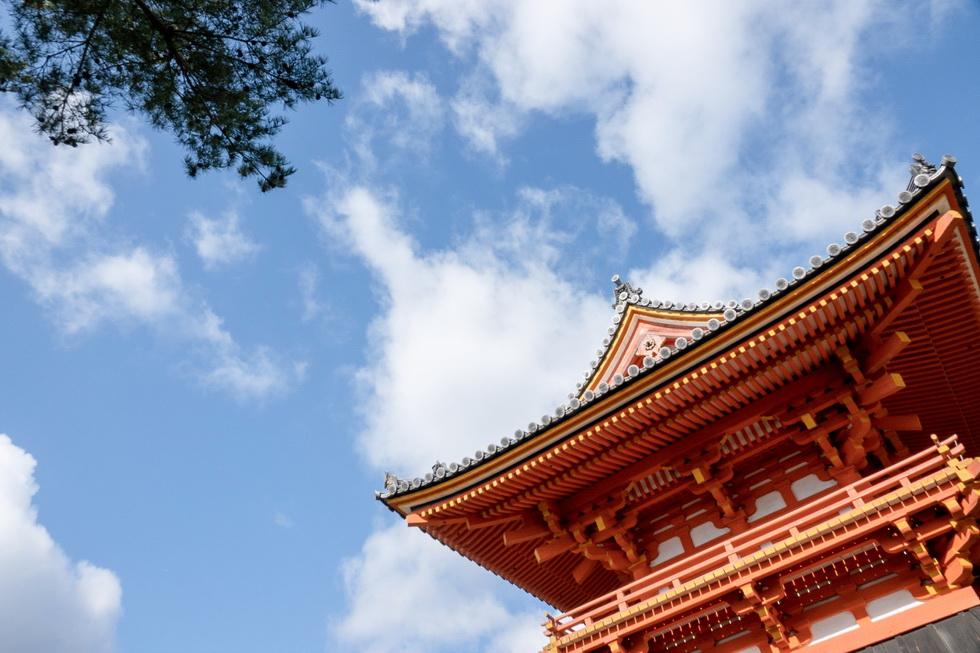 他にも仁王門や五重塔、鐘楼(写真)、御影堂など見どころいっぱいの仁和寺。これは時間がいくらあっても足りないかも