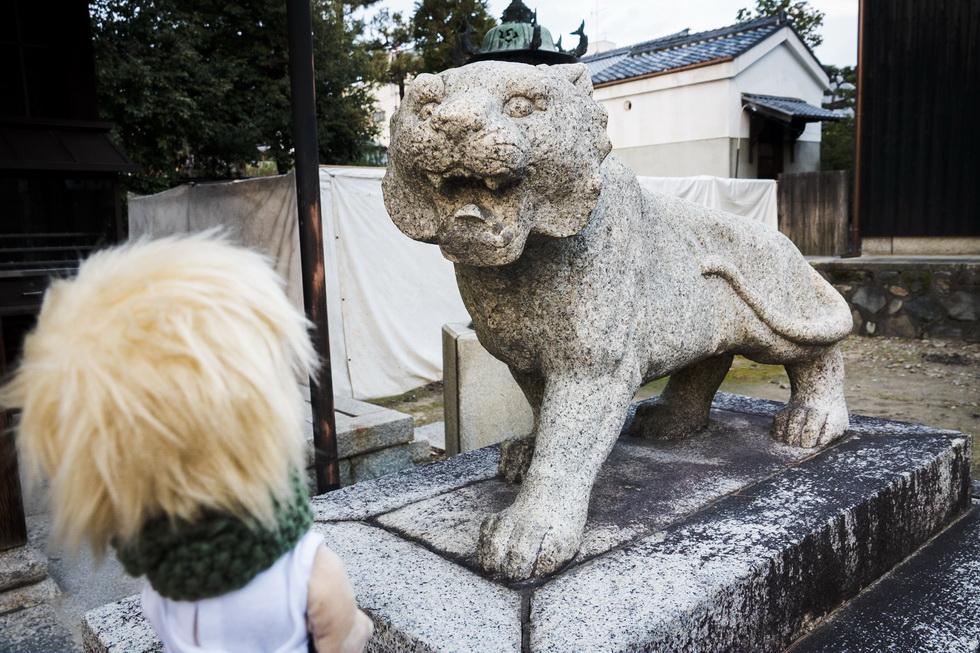 続いてお邪魔したのは市街中心部の建仁寺両足院(3月18日まで)。毘沙門天堂(びしゃもんてんどう)には狛犬(こまいぬ)ならぬ狛寅(こまとら)が。こわーい