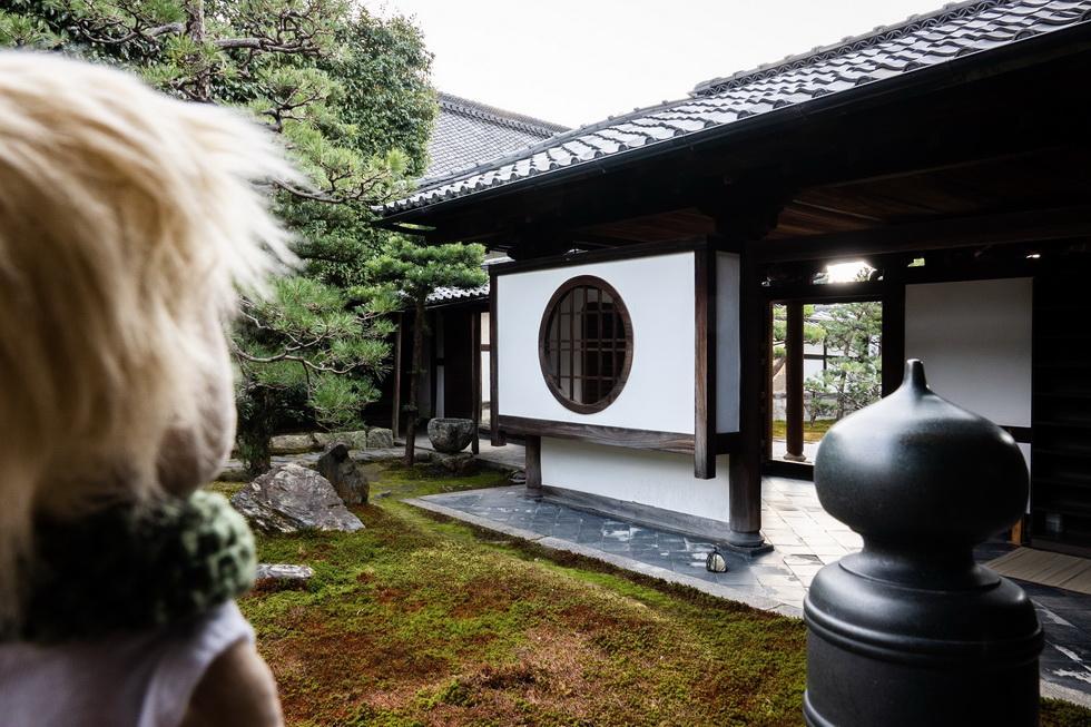 日本式のまんじゅうを伝えたお寺としても有名な両足院。このお庭でおまんじゅう食べたいなあ