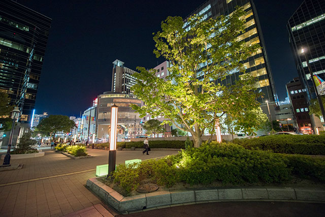 神戸市役所前のフラワーロード