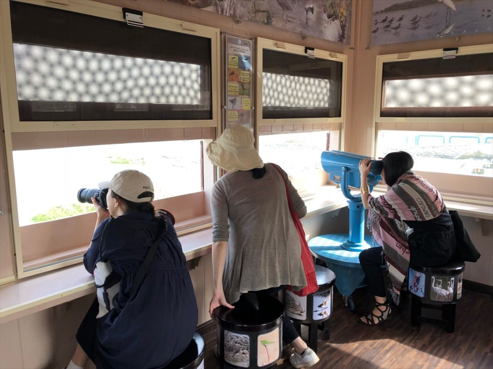 「ラス・アル・ホール野生生物保護区」では、無料で観測舎から野鳥を眺めることができる