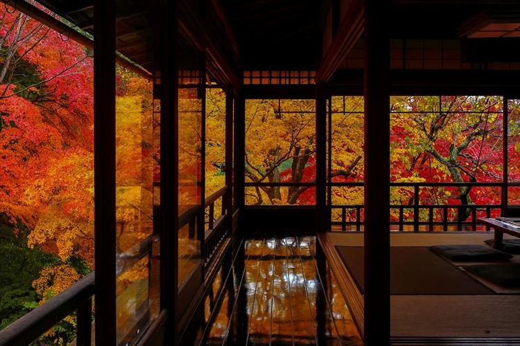 京都の紅葉の新名所。天地を錦に染める「瑠璃光院」のリフレクション紅葉