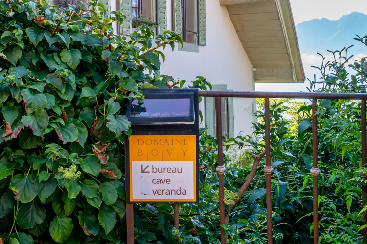 絶景ワインヤードでクラクラ (6) モントルー~ラヴォー