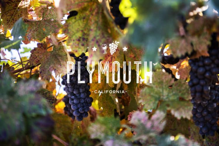 ゴールドカントリーのワイン街道を行く、写真家が旅するプリマス
