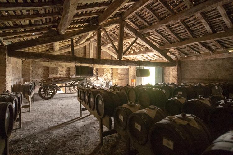 高評価ランブルスコと地域初の貴腐ワイン (2) イタリア・ポー川とエミリア=ロマーニャ州