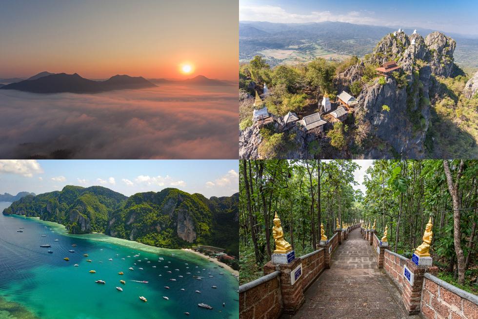 タイ、驚きの姿 意外な視点の動画で