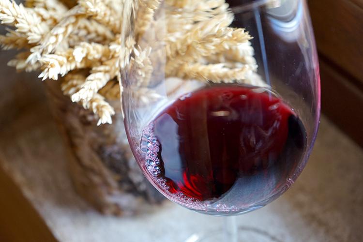 北岸の畑は南向き、寒暖差大きく (3)スペインのエブロ川とリオハ・アラベサのワイン