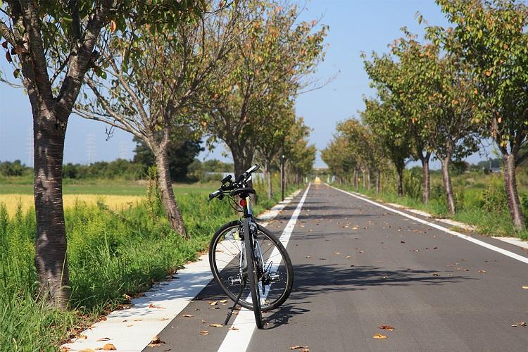 「自転車のまち」土浦から筑波山、霞ケ浦をポタリング旅