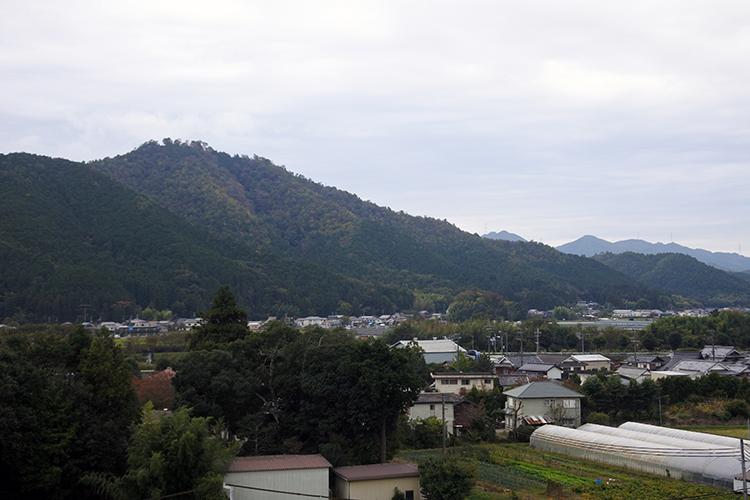 八上城を取り巻く支城と陣城、奥谷城と法光寺城 八上城(2)
