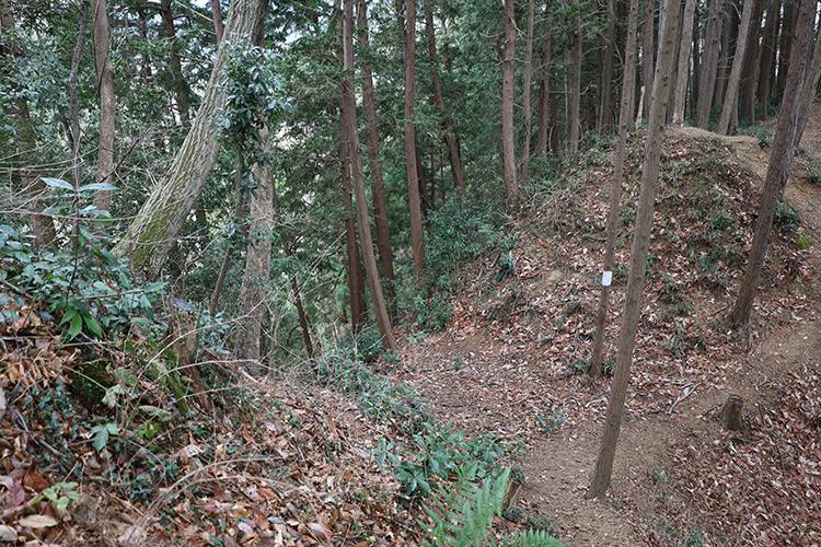 山を要塞化! 東京を代表する山城・浄福寺城