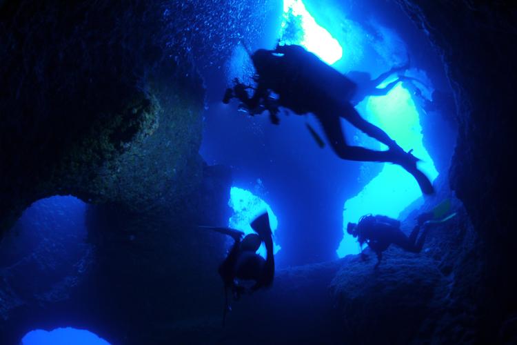入り組んだアーチから光が差し込む、ダイビングスポット「アントニオ・ガウディ」©24°ノース
