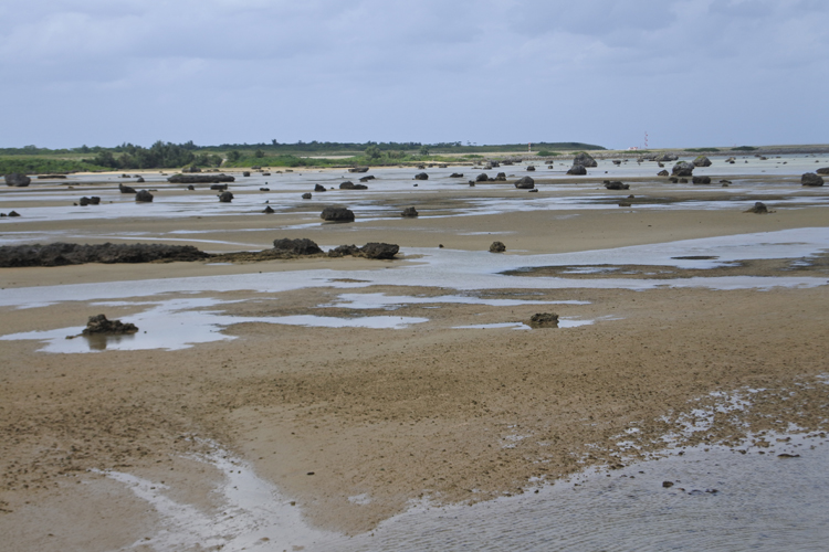 佐和田の浜。潮の干満を生かした漁法が行われている