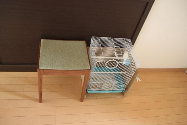 小泉誠デザインのスツールは家族で一番人気。文鳥は3年前から家族の一員に