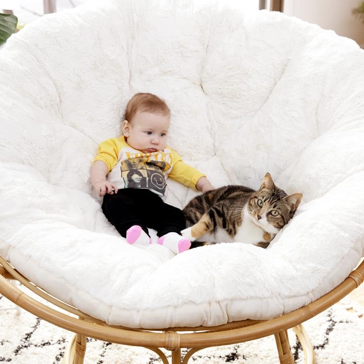 猫と赤ちゃん、毎日少しずつ、家族になっていく。