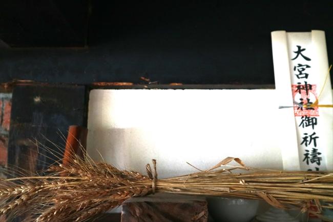 神棚に供えた麦は、いのししの被害から辛くも逃れた生き残り。ここから種をとって来年また畑にまく