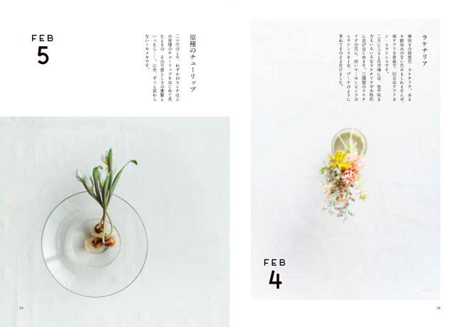 『花と料理』ラケナリアと原種のチューリップ 平井かずみ×渡辺有子×大段まちこ