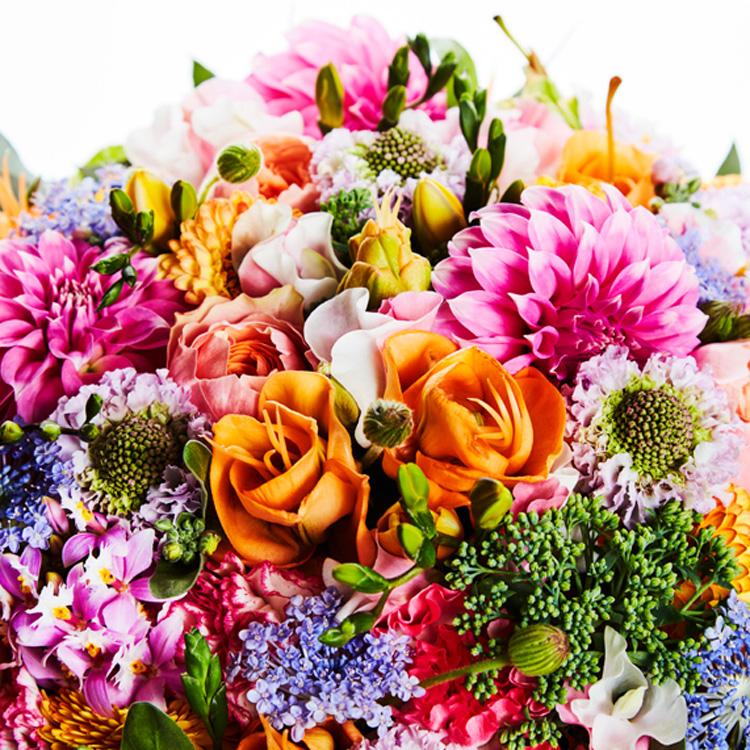 「明日のわたし」へ贈る花束 軽やかに新しい時代を拓き、それぞれの美しい花を咲かせてほしい