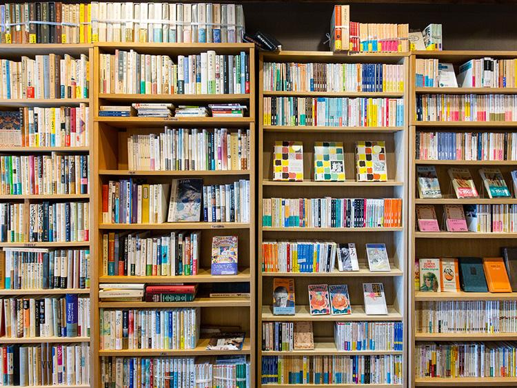 日本の文芸小説、フランスの思想や文学が中心の本棚