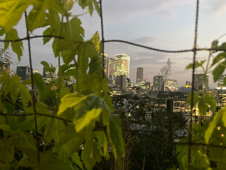 野村友里さん「東京という街に、これからも住み続けたい?」