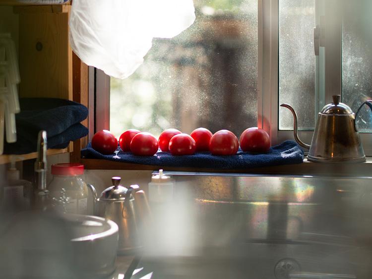 陽の差し込むキッチン