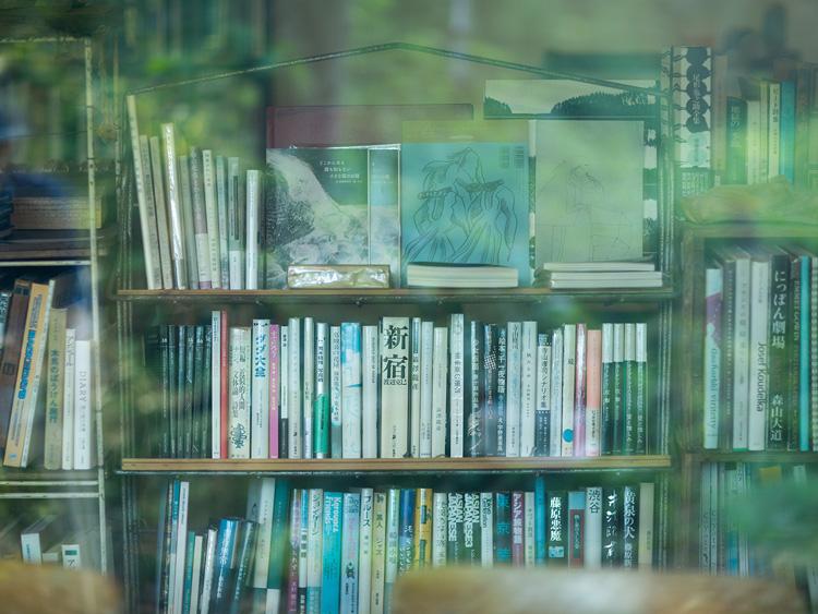 窓越しの本棚
