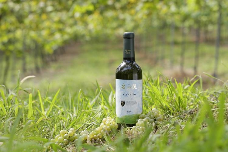 霧深い盆地、大分・安心院の豊かな自然が育む「知る人ぞ知るワイン」